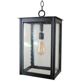 Haugen 1-Light Outdoor Hanging Lantern