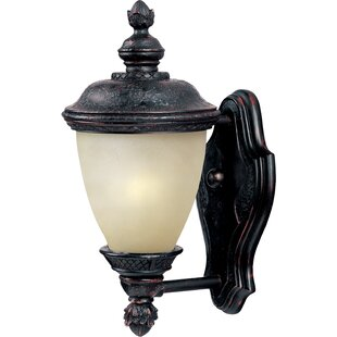 Astoria Grand Roehl LED Outdoor Wall Lantern