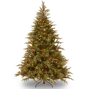 fraser 6 green artificial christmas tree with 800 led multi lights and stand
