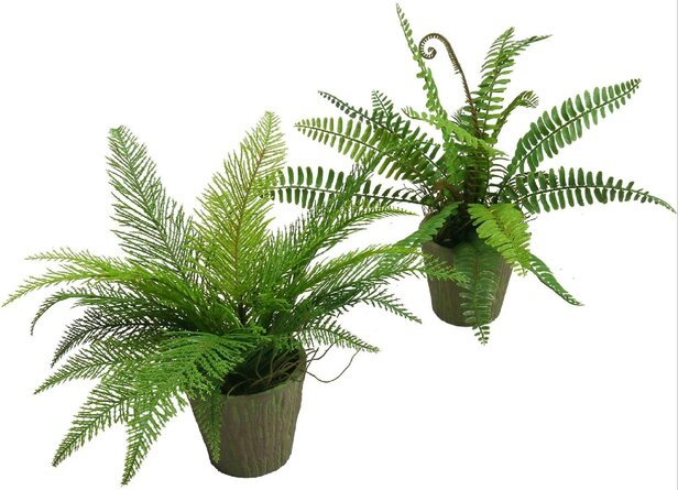 Artificial Potted  Fern Pine Plants 12 Inches Set Of 2 Plastic Fake Green Plant In Pot Home Office Decor