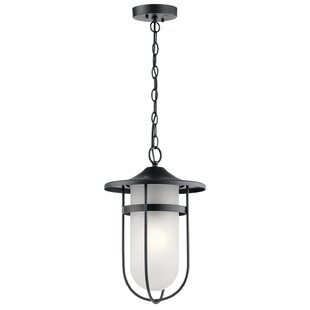 Breakwater Bay Largo 1-Light Outdoor Pendant
