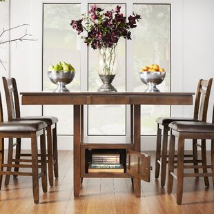 Dahlonega 5 Piece Counter Height Extendable Dining Set