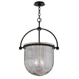 Pinnock Glass 4-Light Urn Pendant by Gracie Oaks