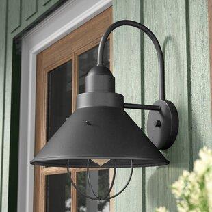 Longshore Tides Castro 1-Light Outdoor Barn Light