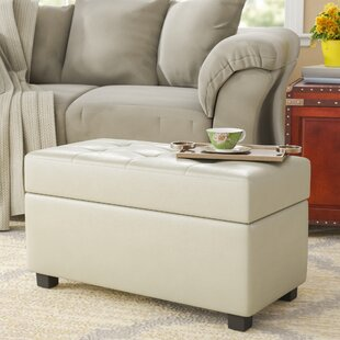 Red Barrel Studio Chesterhill Storage Ottoman