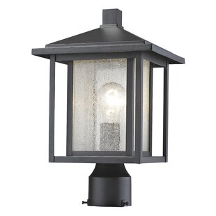 Online Reviews Hungate Outdoor 1-Light Lantern Head By Bloomsbury Market