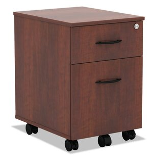 Villalobos 2-Drawer Mobile Vertical Filing Cabinet