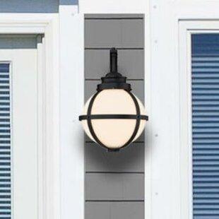 Nester 1-Light Outdoor Wall Lantern by Breakwater Bay
