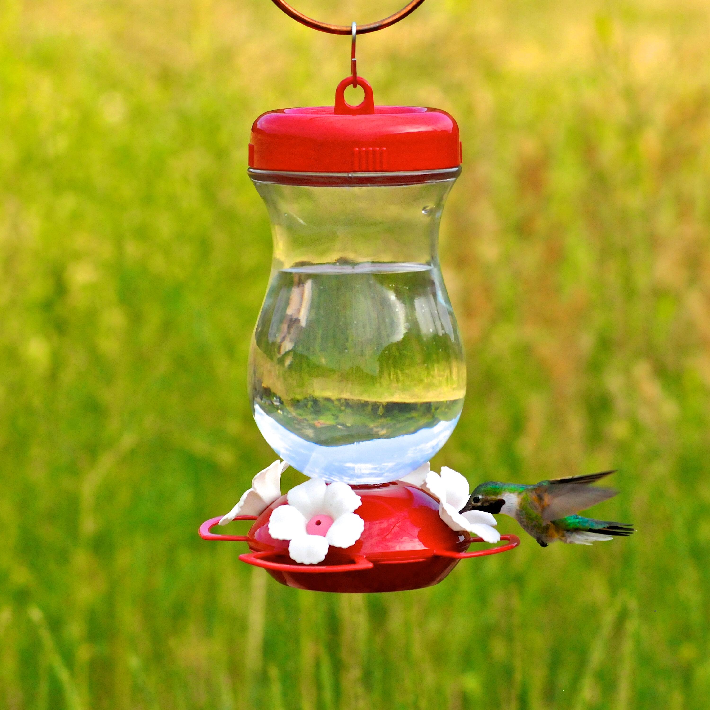 Perky Pet Top Fill Hummingbird Feeder Reviews Wayfair
