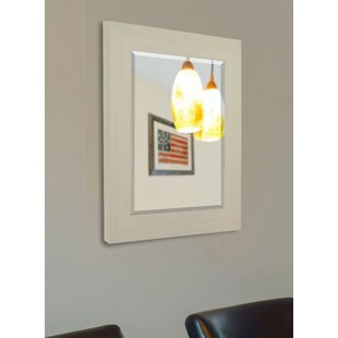 Shop For Traditional Aluminum Wall Mirror By Darby Home Co
