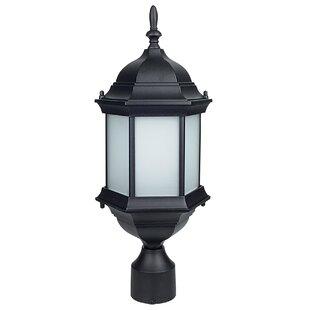 Brammer Glass Outdoor 1-Light Lantern Head by Charlton Home