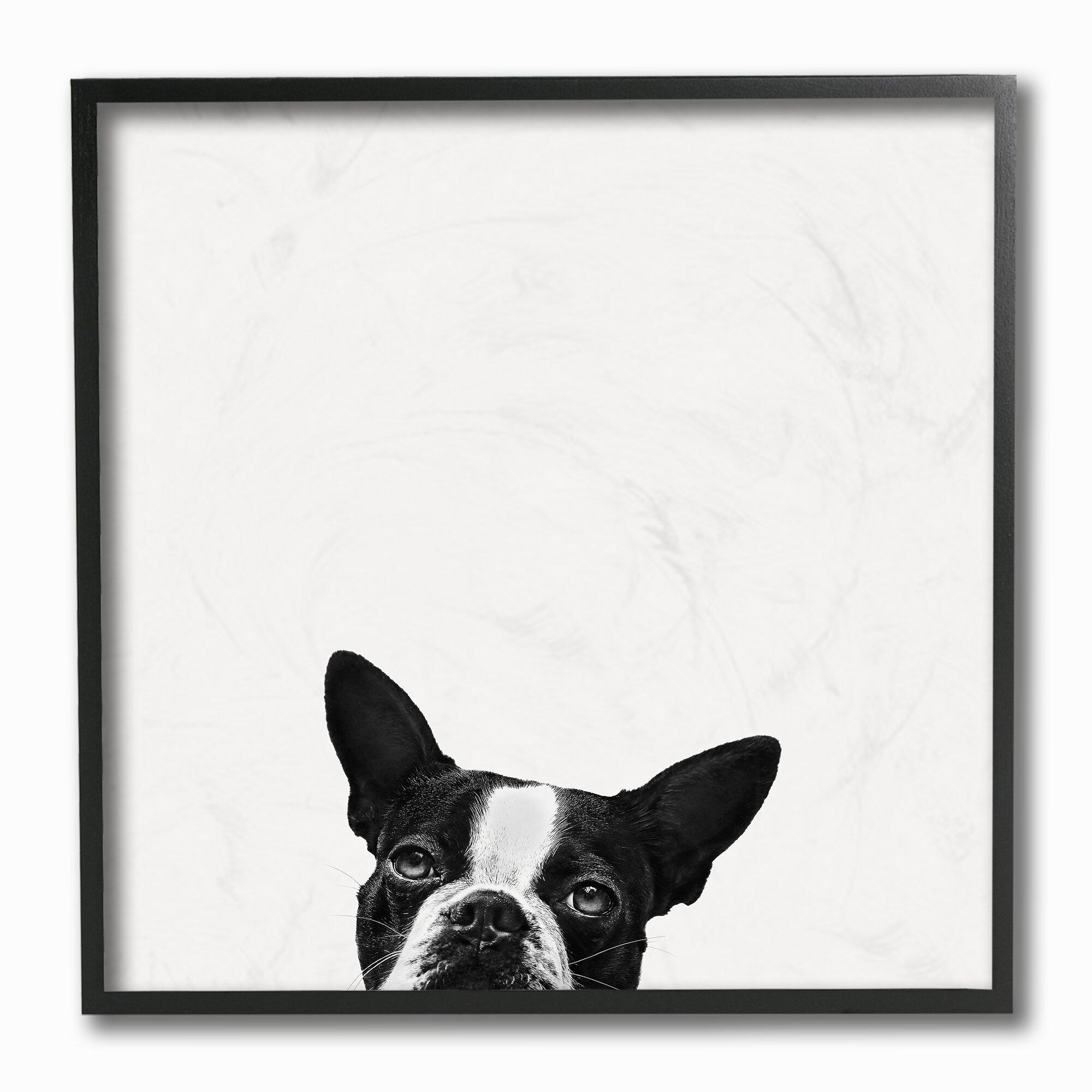 Winston Porter Minimal Monochrome Dog Peeking From Below By Jon Bertelli Photograph Print Wayfair
