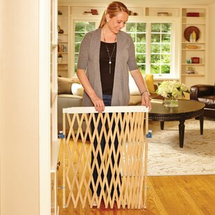 Shop For Expandable Swing Gate By North States