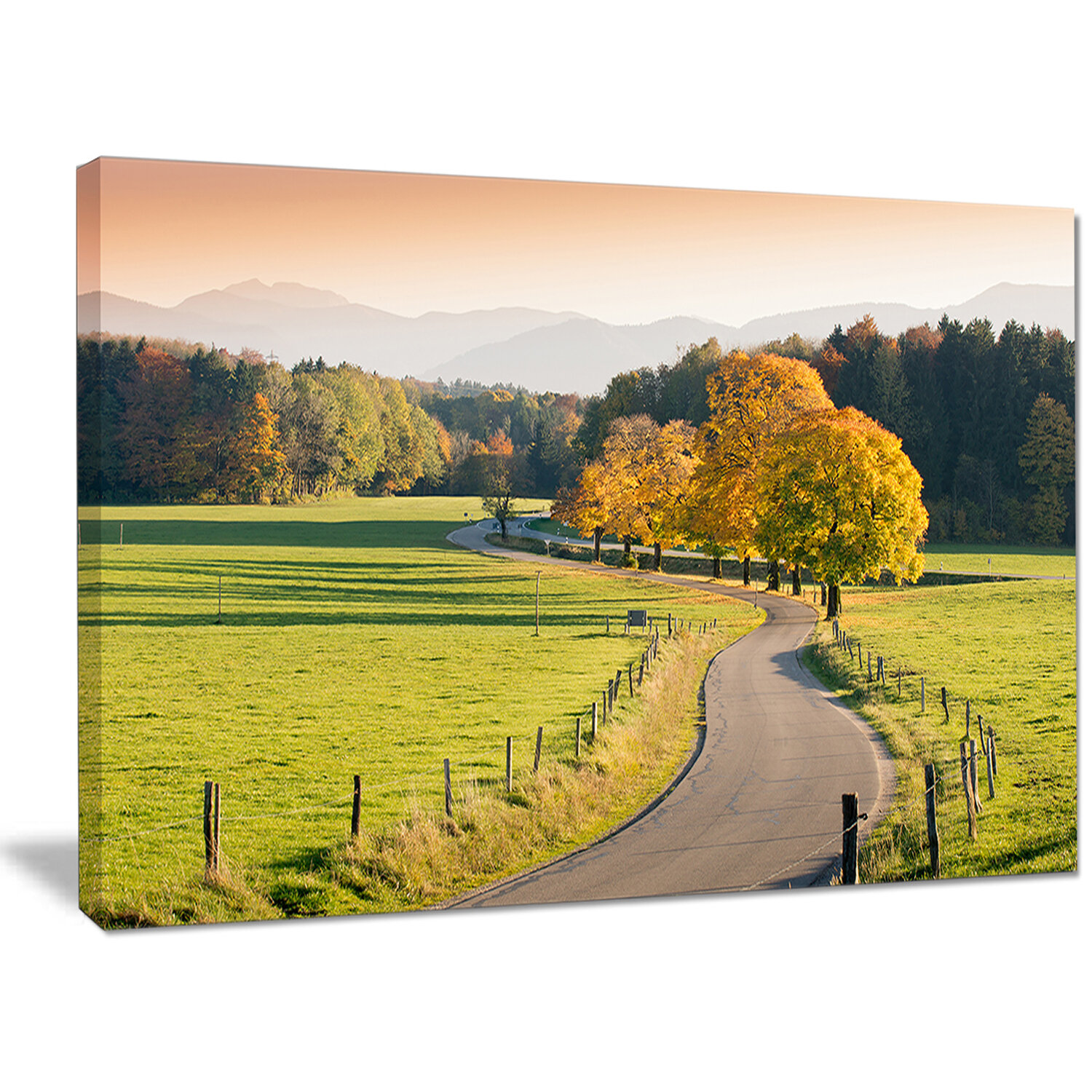 DesignArt \'Winding Country Road in the Fall\' Photographic Print on ...
