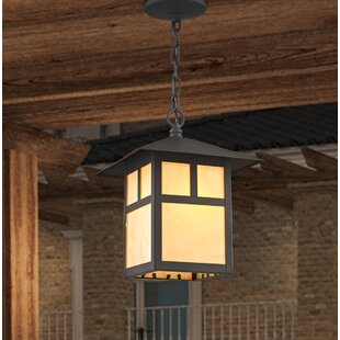 Read Reviews Giles 1-Light Outdoor Hanging Lantern By Alcott Hill