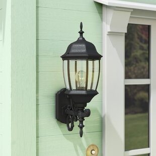 Twigg Traditional 1-Light Glass Shaded Outdoor Wall lantern