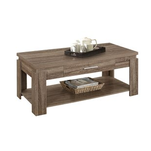 Georgia Bottom Shelf Wooden Coffee Table with Storage