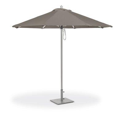 Harpersfield 9 Market Sunbrella by Beachcrest Home Fresh