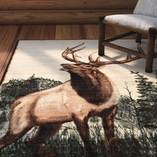 Find for Lacour High Quality Woven Ultra-Soft Traditional Southwest Wilderness Elk Theme Berber Area Rug ByLoon Peak