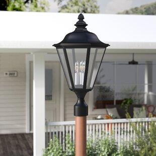 Eakins 3-Light Lantern Head by Darby Home Co