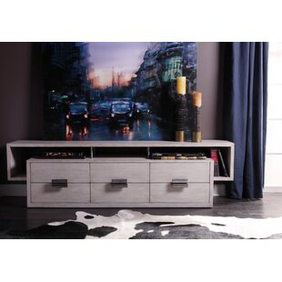 Leeward Peninsula TV Stand
