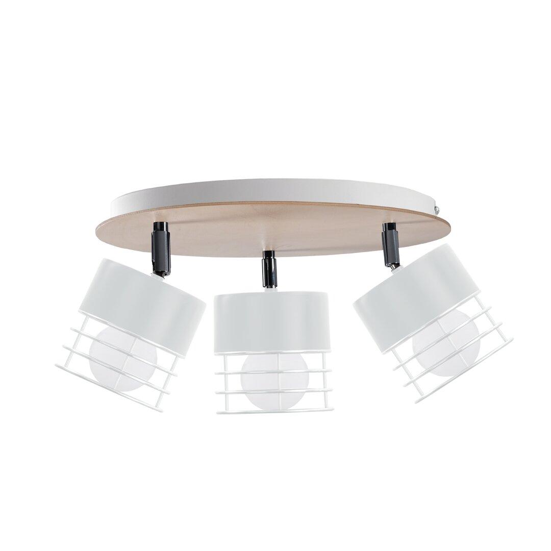 Tequesta 3-Light 32cm Ceiling Spotlight