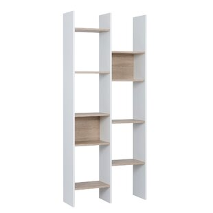 Thompkins Standard Bookcase