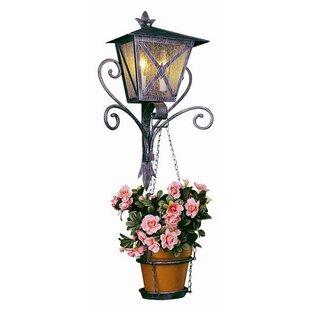 Rayden 2-Light Outdoor Wall Lantern