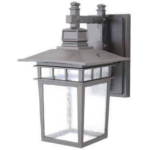 Lenhardt 1-Light Outdoor Wall Lantern By Charlton Home Outdoor Lighting