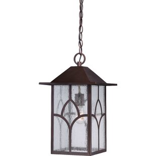 Dohn 1-Light Outdoor Hanging Lantern