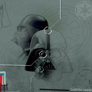 Star Wars Darth Vadar 10.5' x 72