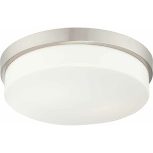 1-Light Ceiling Fixture Flush Mount