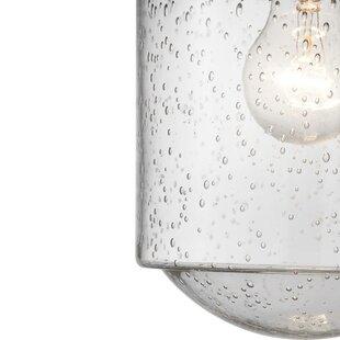 Sisson 1-Light Outdoor Hanging Lantern