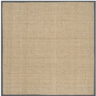 Binford Loomed Natural Dark Gray Area Rug