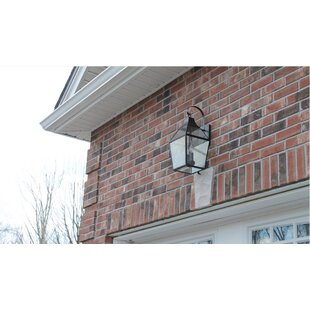 Canora Grey Park 2-Light Outdoor Wall Lantern