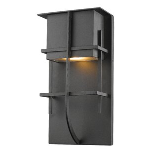 Williston Forge Crespin 1-Light Outdoor Sconce
