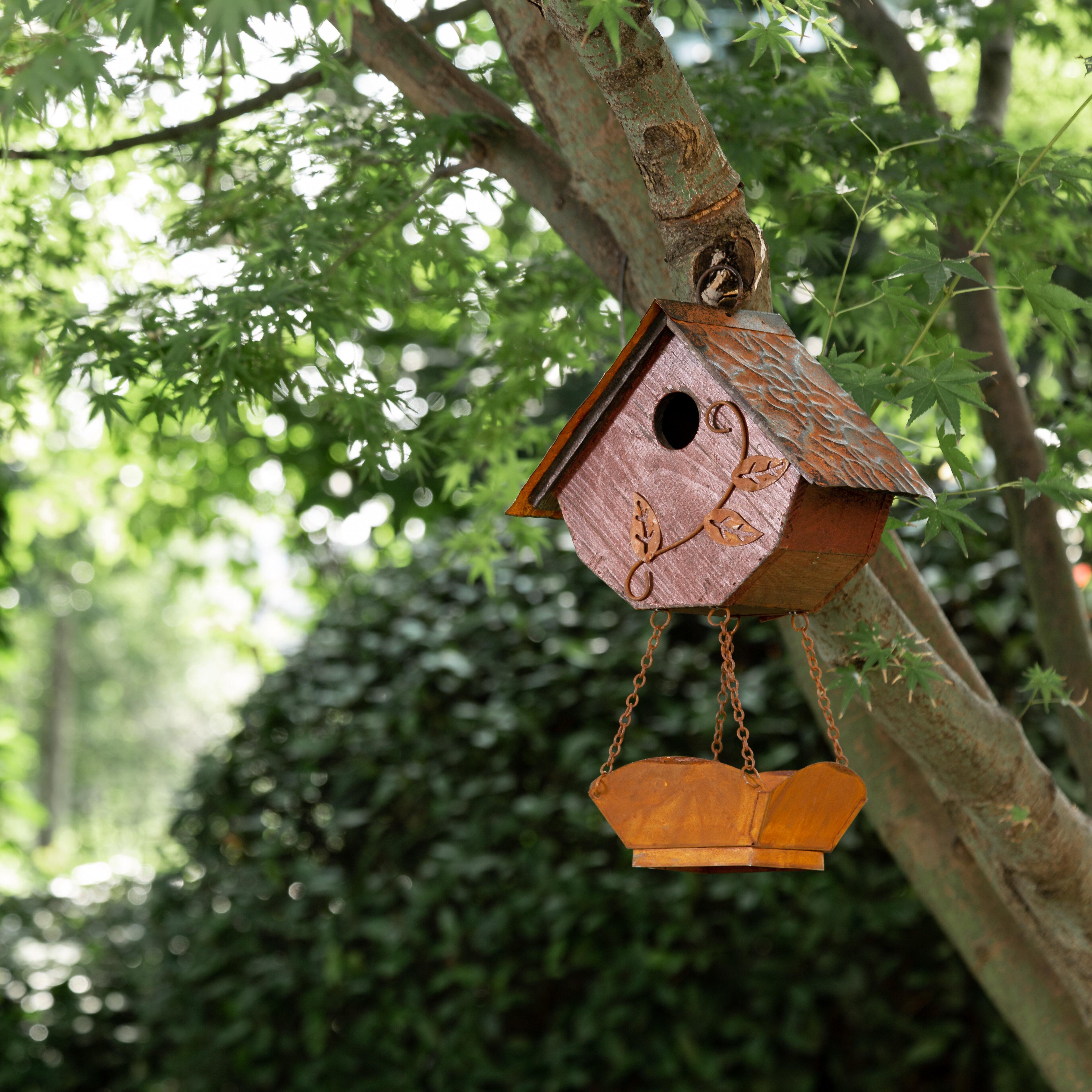 August Grove Papachan Hanging 13 In X 9 In X 5 In Birdhouse Reviews Wayfair
