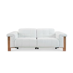 Paine Reclining Sofa by Orren Ellis
