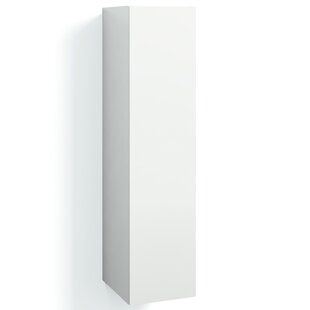 Jerkins 30 X 123cm Wall Mounted Tall Bathroom Cabinet By Brayden Studio