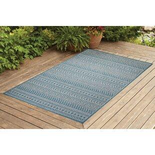 Starr Turquoise Indoor/Outdoor Area Rug