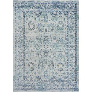Aqua Bathroom Rugs | Wayfair
