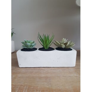 3 Artificial Cactus Succulent In Planter Set By Bay Isle Home