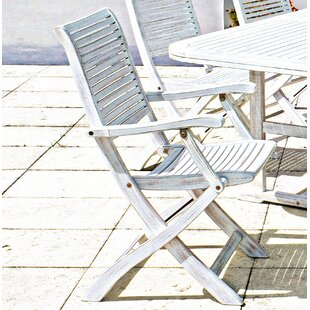 Paulsboro Folding Garden Chair (Set Of 2) By Beachcrest Home