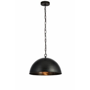 Greyleigh Nederland 1-Light Inverted Pendant