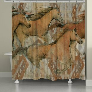 Southwestern Horses Single Shower Curtain