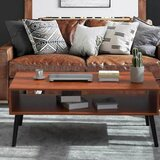 Renner Coffee Table with Storage by George Oliver