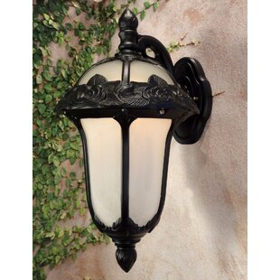 Rose Garden 1-Light Outdoor Wall lantern