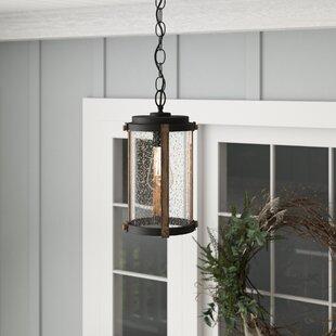 Post 1-Light Outdoor Pendant by Gracie Oaks