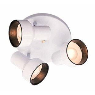 Monument Spotlight Ceiling 3-Light Semi Flush Mount