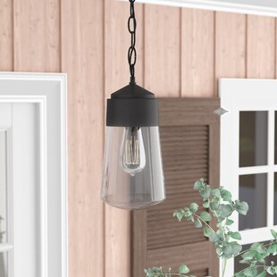 Zola 1-Light Outdoor Pendant by Laurel Foundry Modern Farmhouse